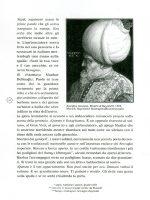 selim199